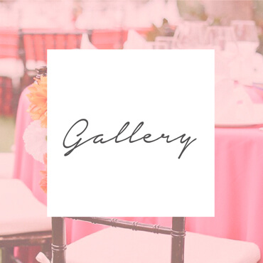 My Perfect Wedding Galler