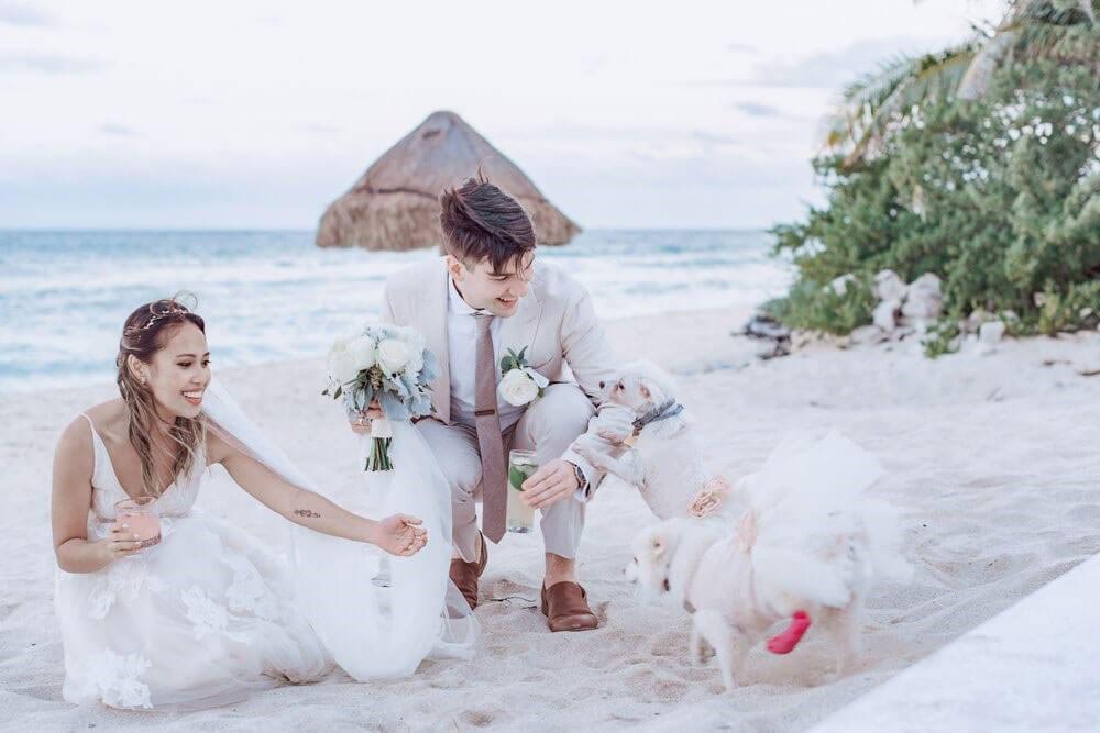 Wedding Planner Testimonial - Shree and Brian